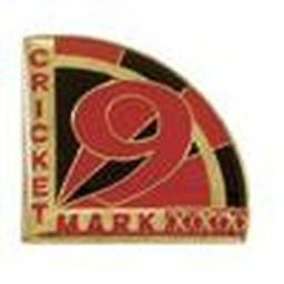 Award Pins - Cricket Mark 9