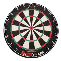 Click here to learn more about the DMI Sports Bandit Plus Bristle Dartboard.