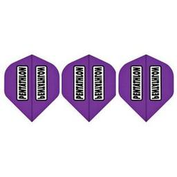 Click here to learn more about the GLD Purple Standard Pentathlon 2073 Dart Flights.