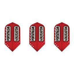 Click here to learn more about the GLD Red Slim Pentathlon 2396 Dart Flights.